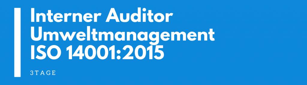 interner auditor umweltmanagement